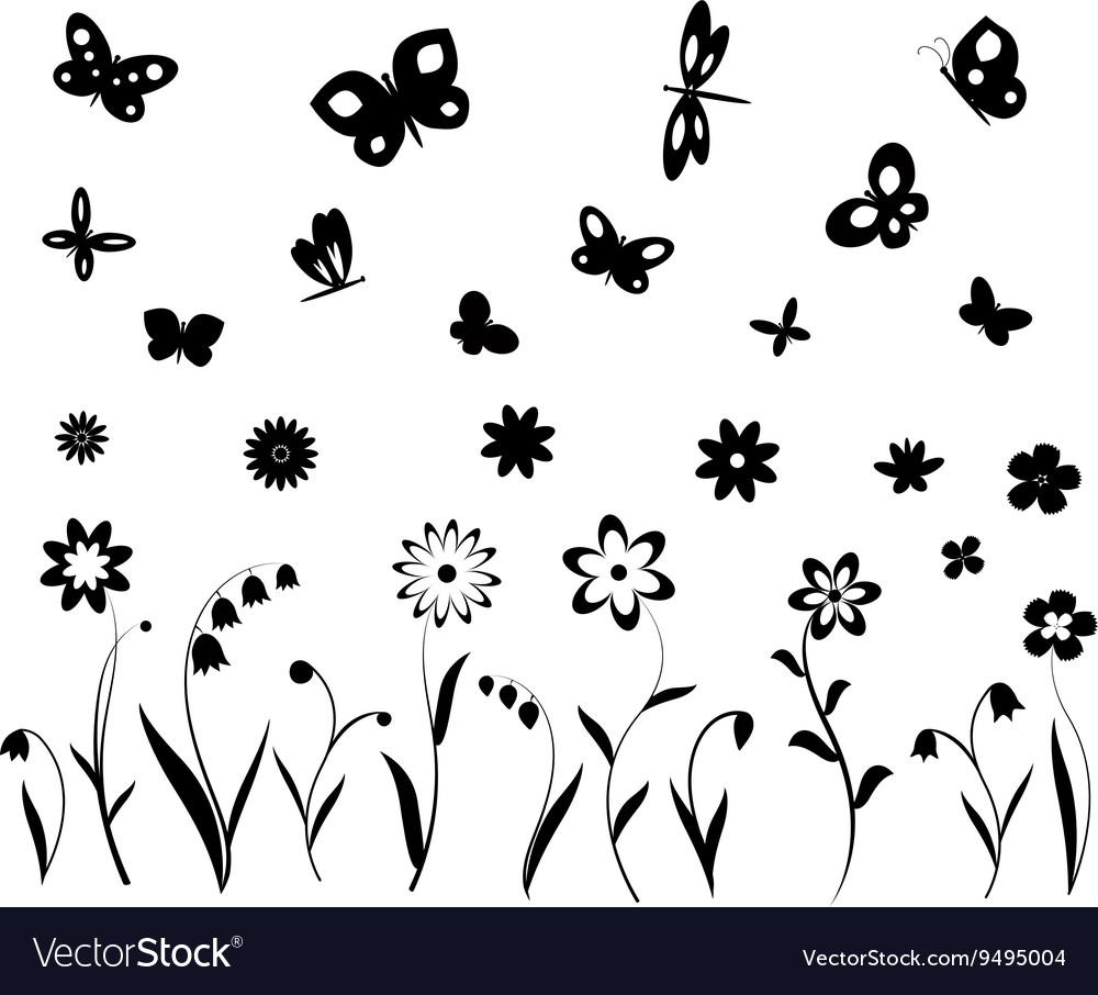 Flowers butterflies and dragonflies