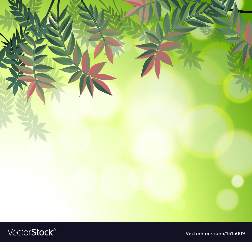 a stationery with many leaves royalty free vector image