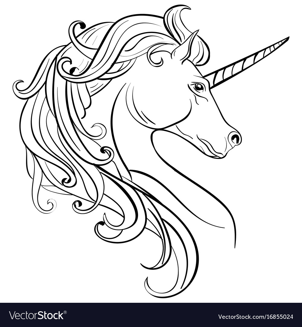 Sketch unicorn hand drawn ink unicorn horse vector image