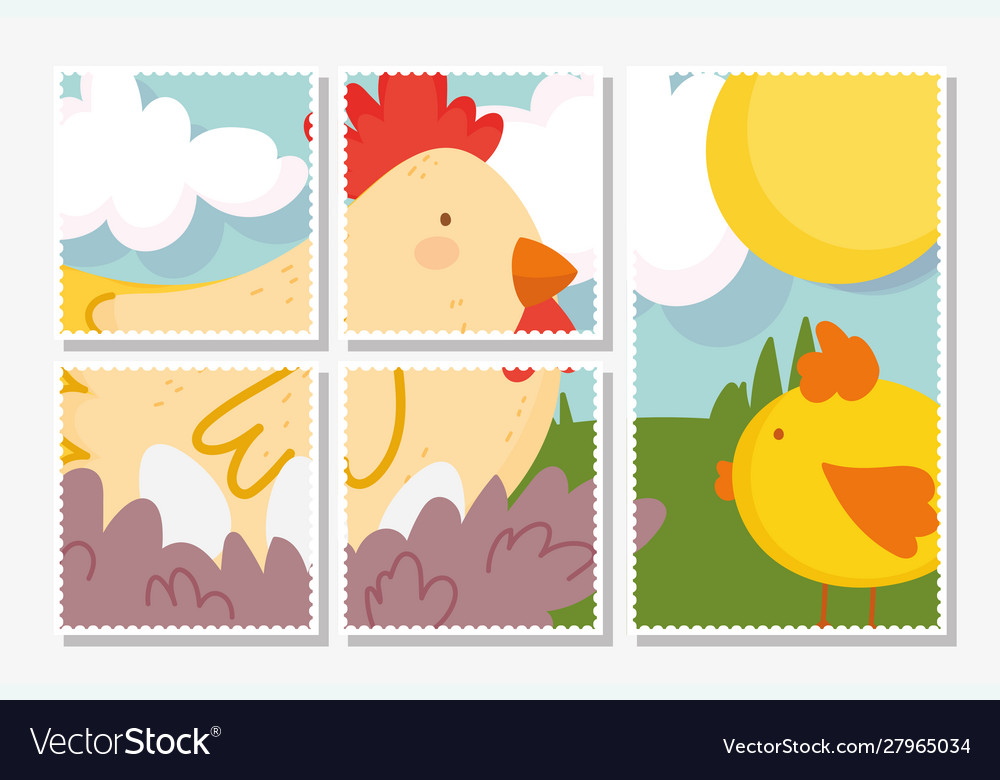 Chicken and chick grass sun farm animals cards
