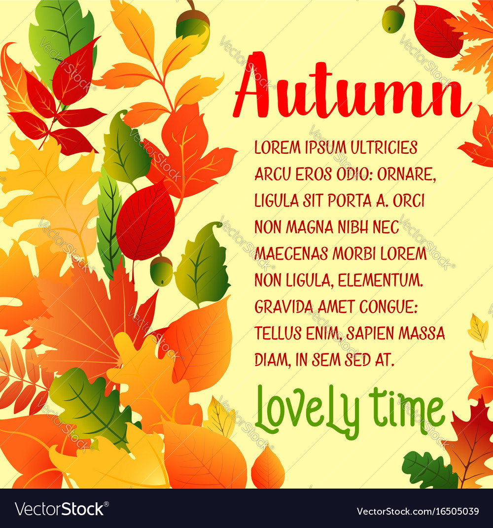 Autumn leaf fall greeting poster vector image