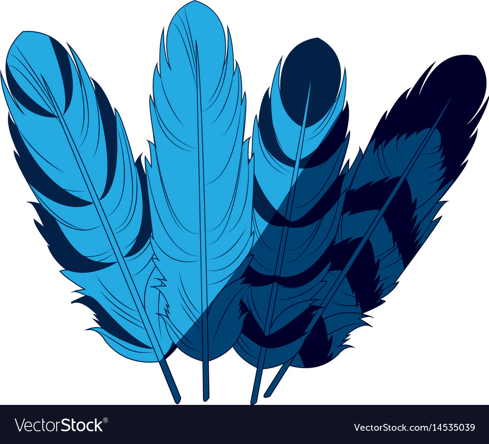 Blue differents feather free spirit rustic