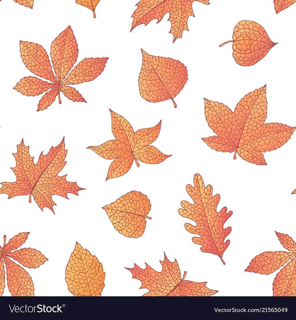 Autumn seamless pattern with oak maple beech