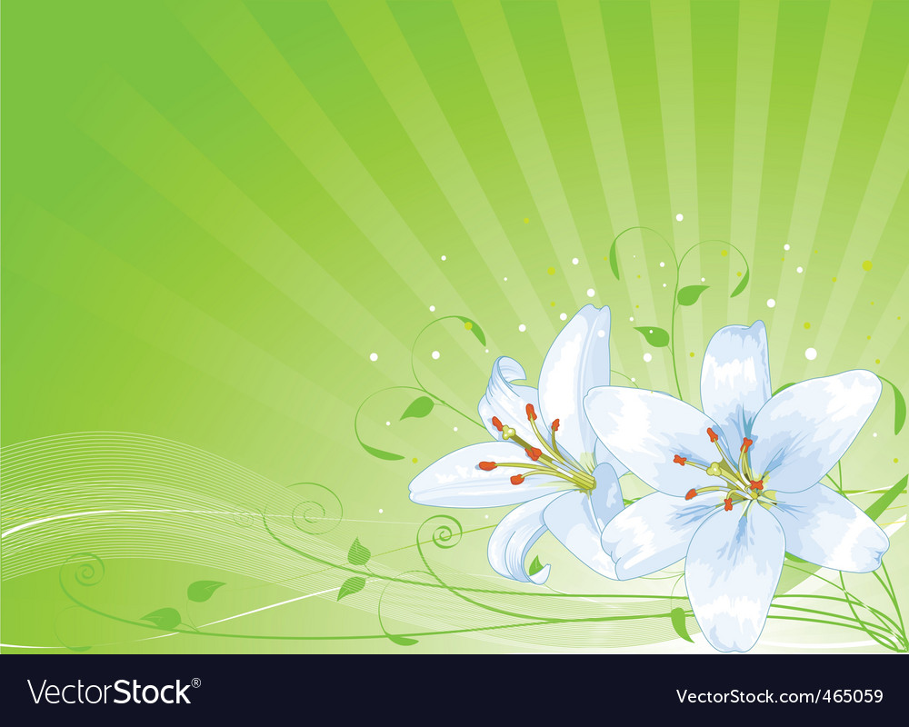 images of easter lilies. Easter Lilies Background