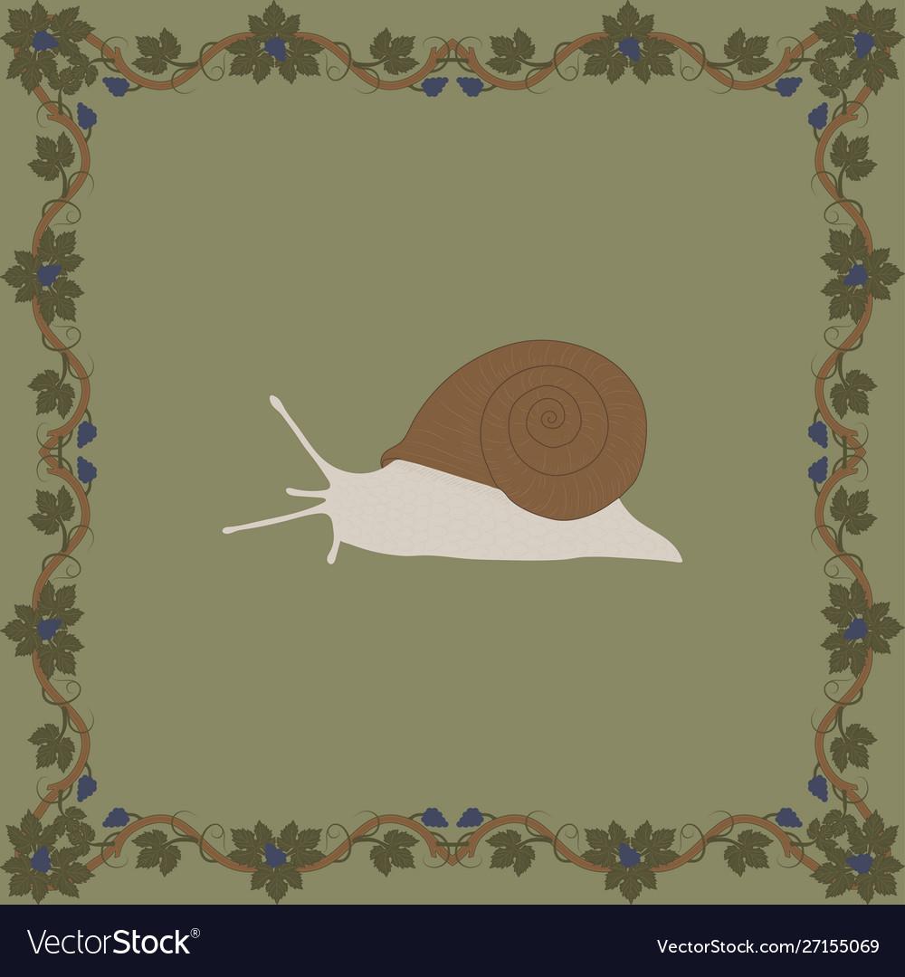 Grape snail color in medieval floral