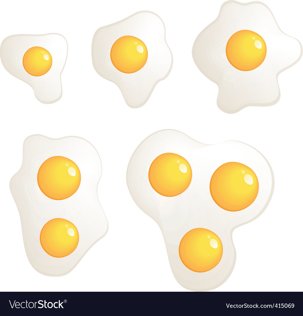 Omelet evolution set vector image