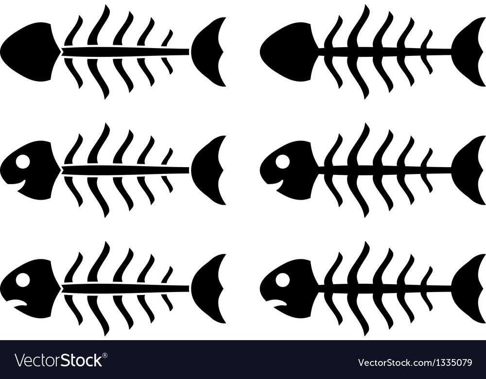 Set of fish skeletons