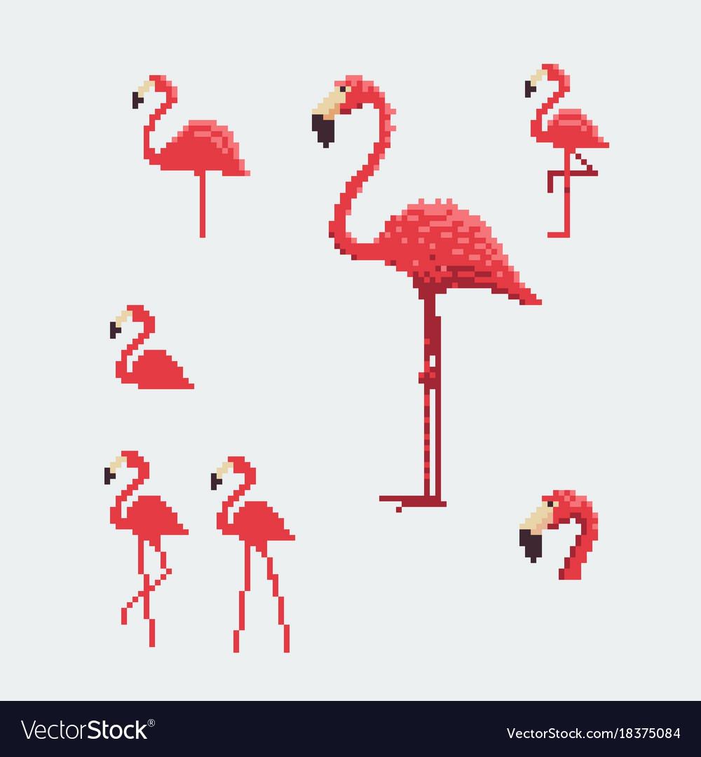 Pink flamingo icons set pixel art style