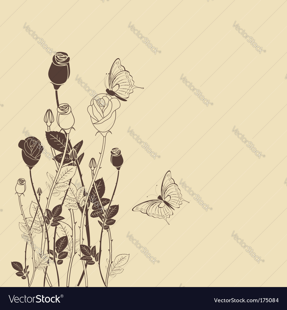 Rose flower with wallpaper vector image
