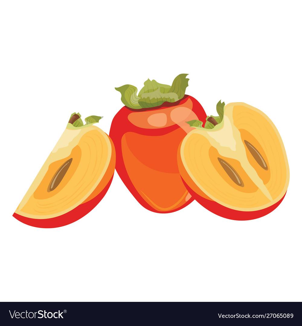 Cartoon persimmon fresh vitamin fruit juicy