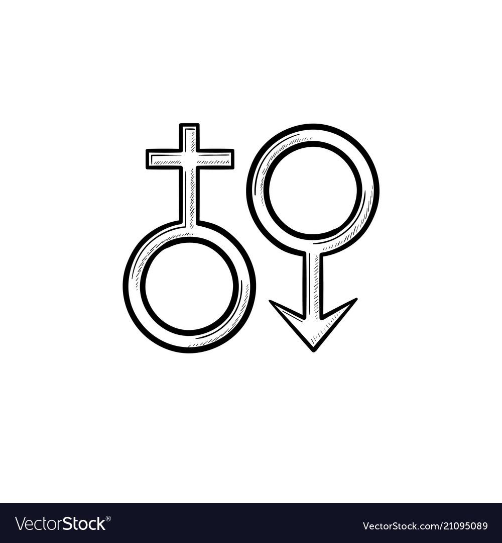 Female male genger symbols hand drawn outline