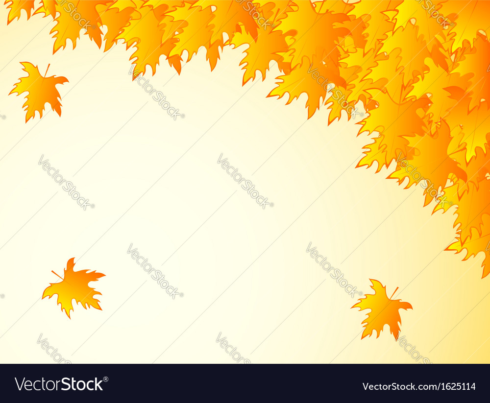 Background in warm colors with yellow maple leaves