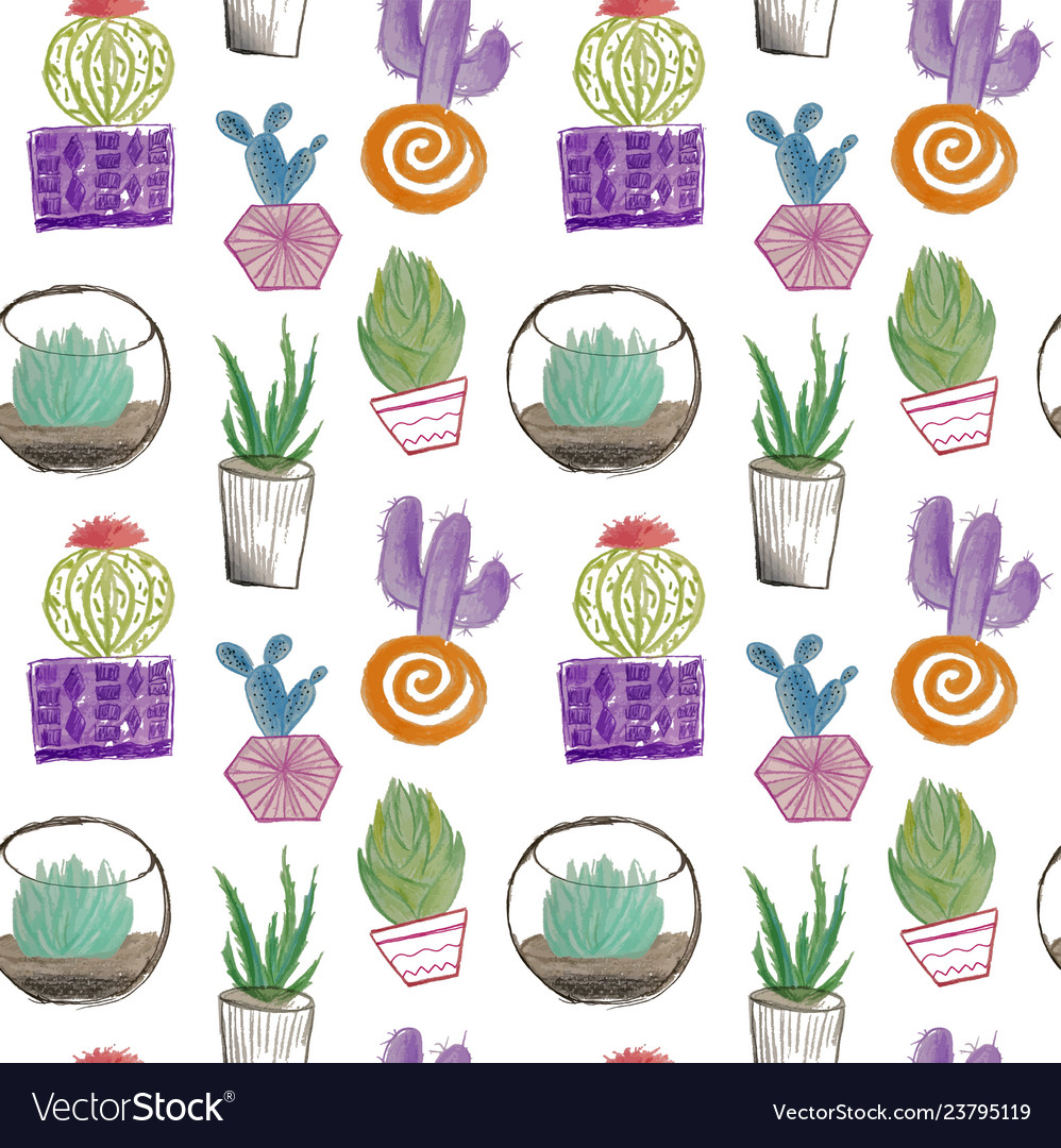 Cactus and succulent hand drawing