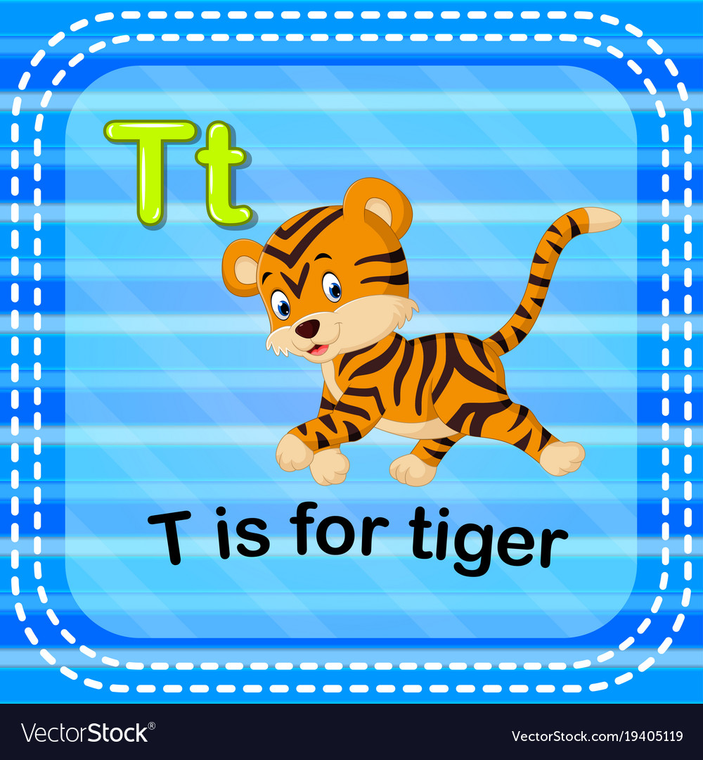 Flashcard Letter T Is For Tiger Vector Image