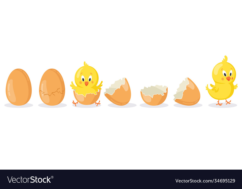 Cartoon hatched easter egg cracked chicken eggs