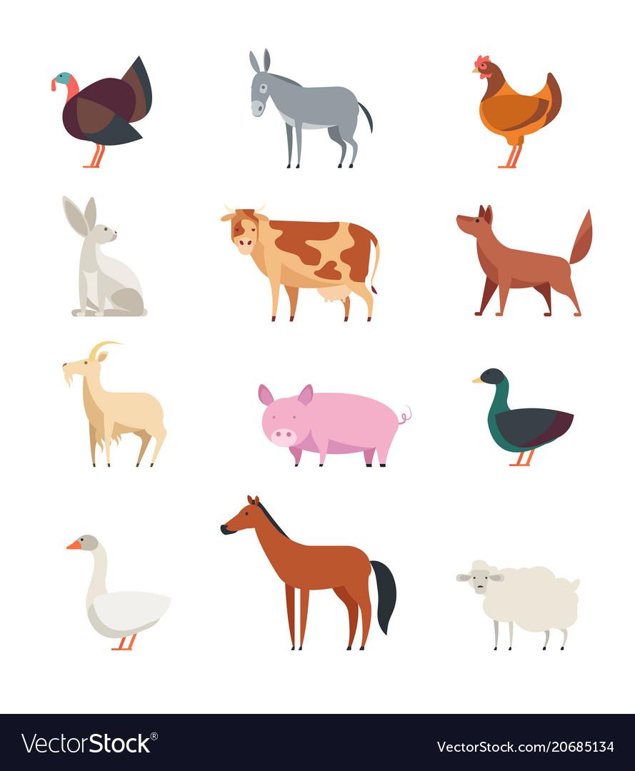 Cartoon farm animals and birds set isolated