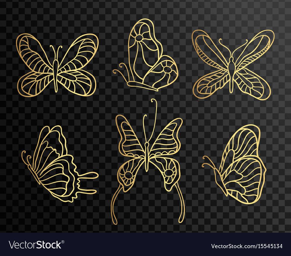 Set of butterflies butterfly icons isolated on