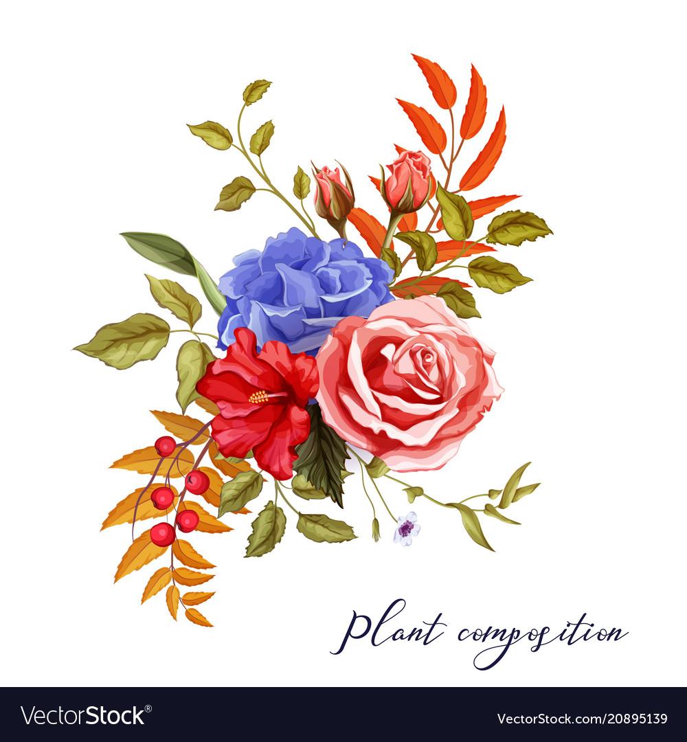 Autumn spring summer flower rose bouquet vector image