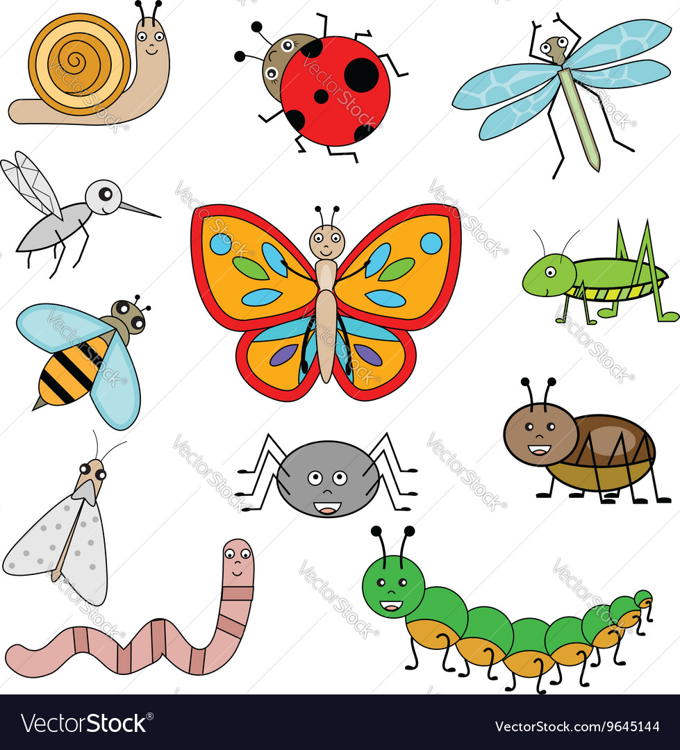 Insects in cartoon style vector image