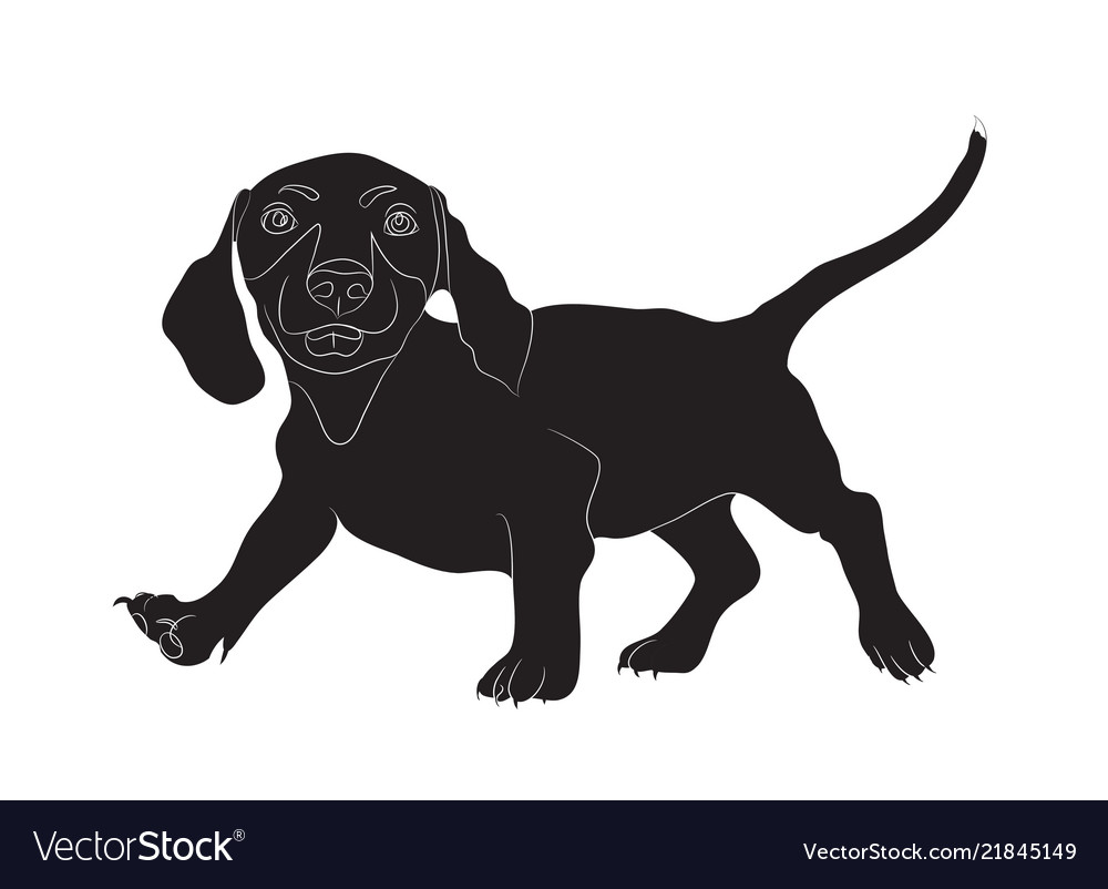 Dachshund stands dog silhouette