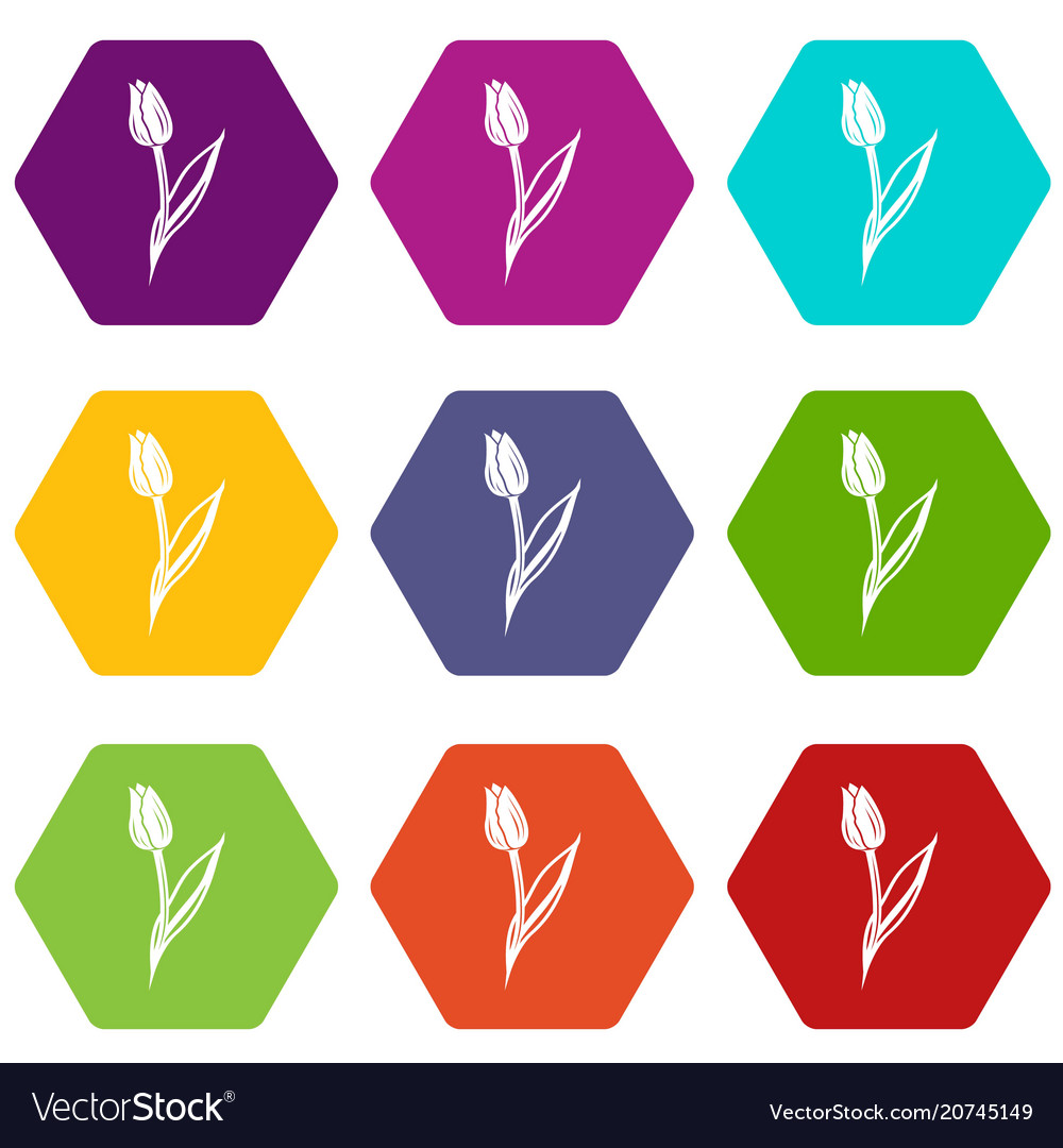 Tulip icons set 9 vector image