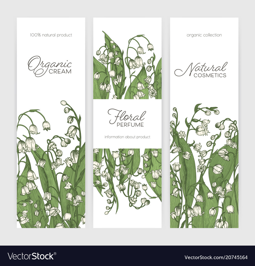 Set of vertical banner or label templates with vector image