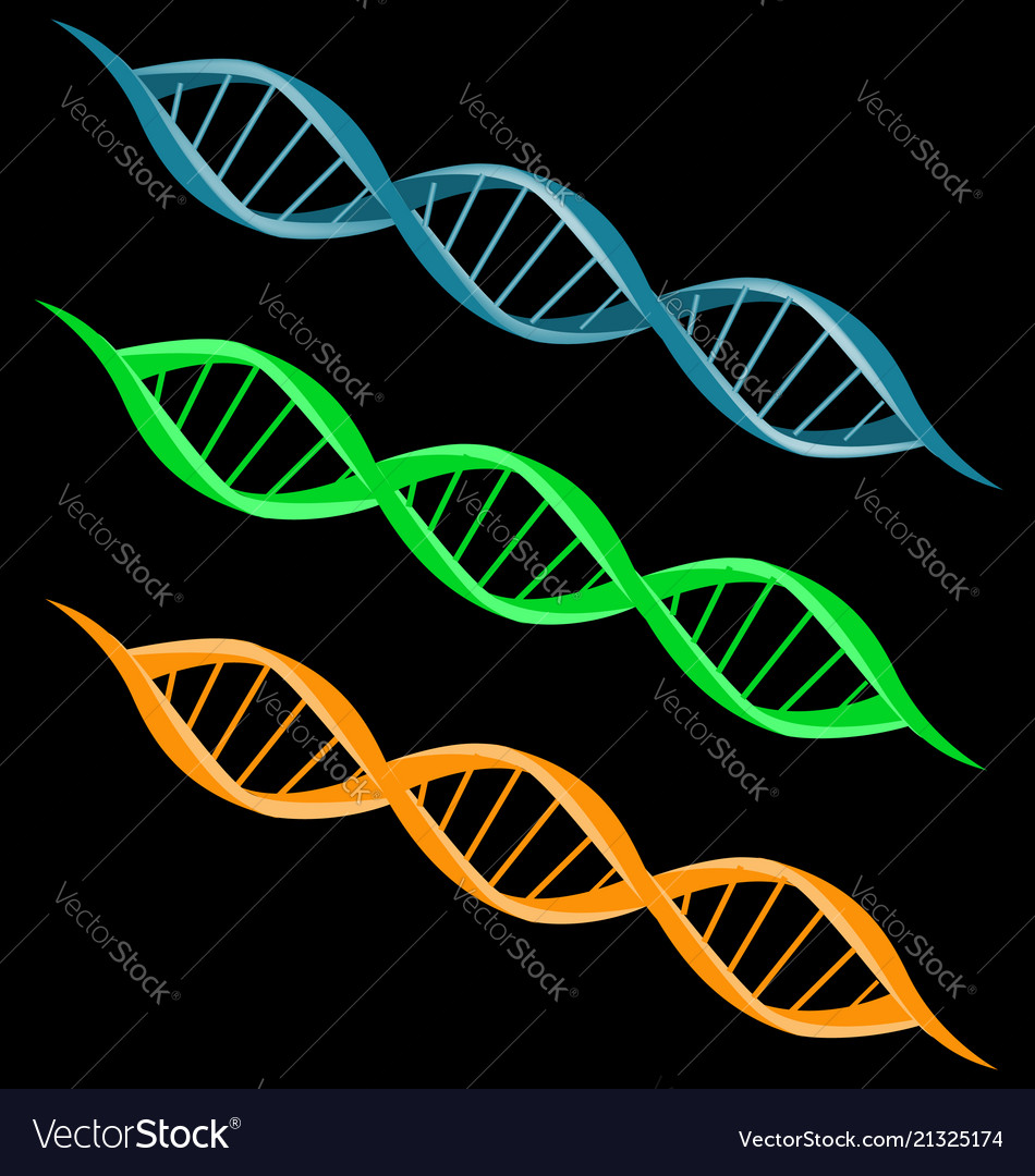 Dna strand double helix spiral icon set