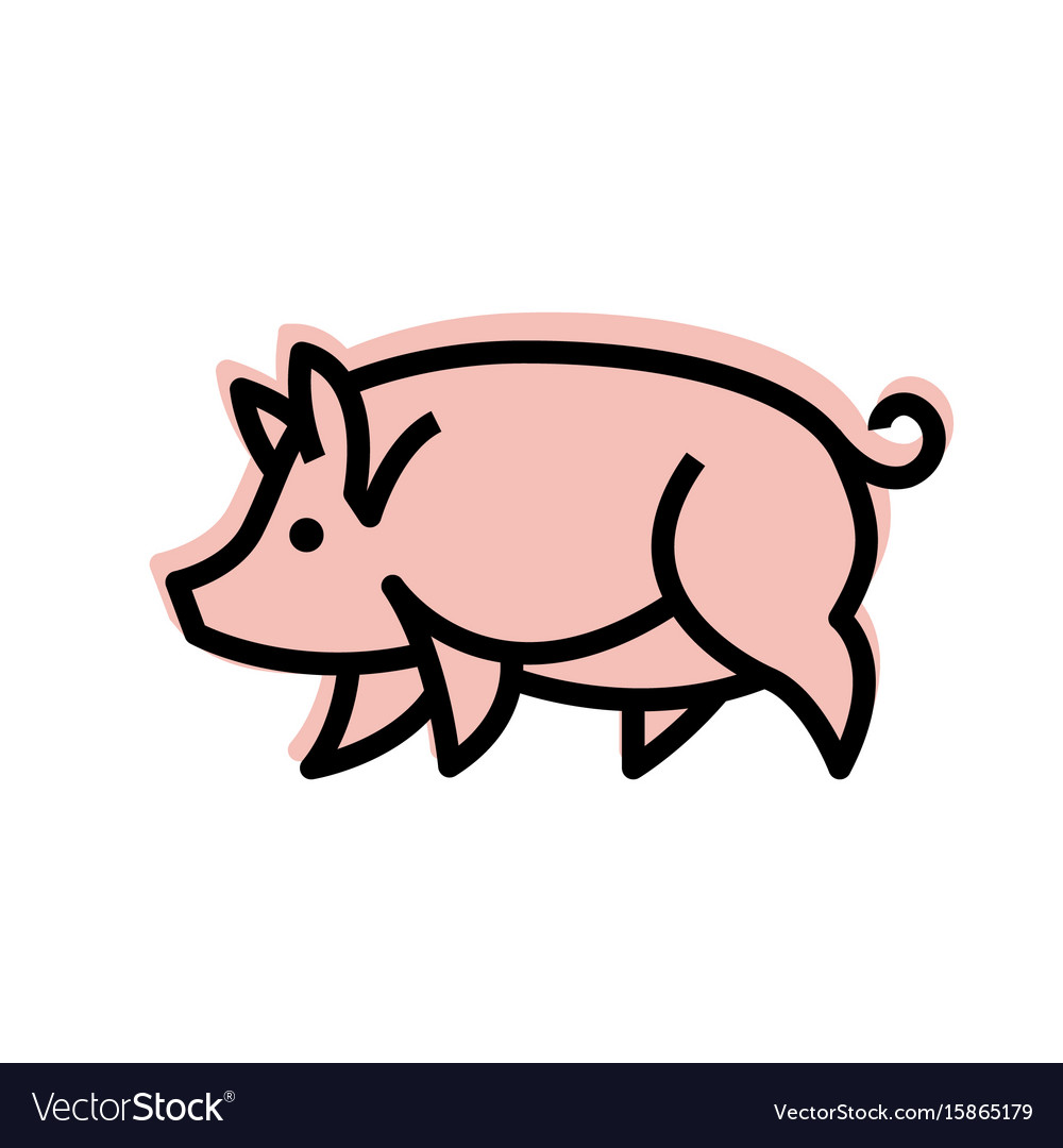 Colorful stylized drawing of pig