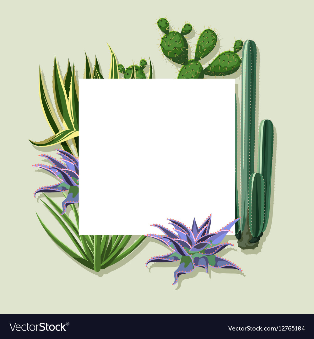 Frame with cactuses and succulents set Plants of