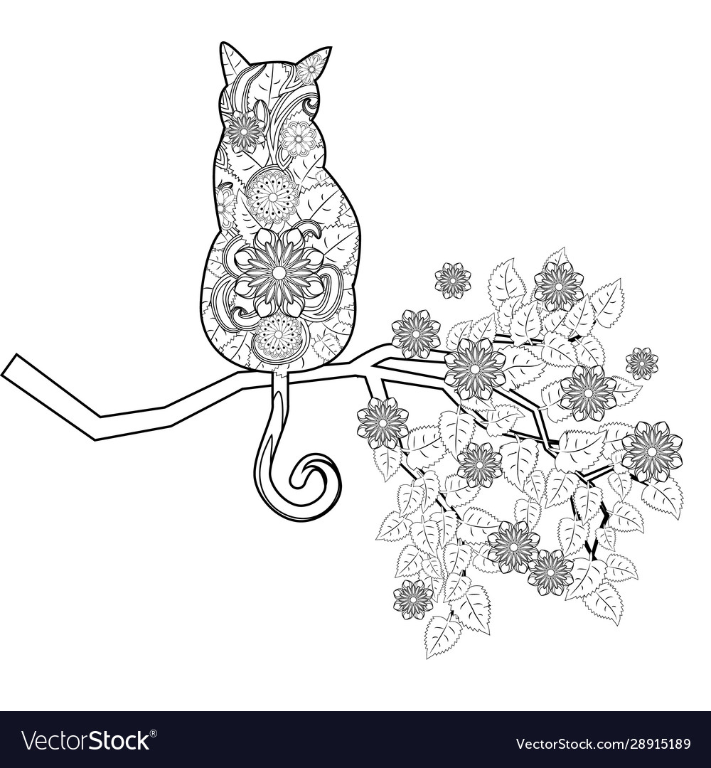 Coloring Book Magic Cat For Adults Hand Drawn Vector Image