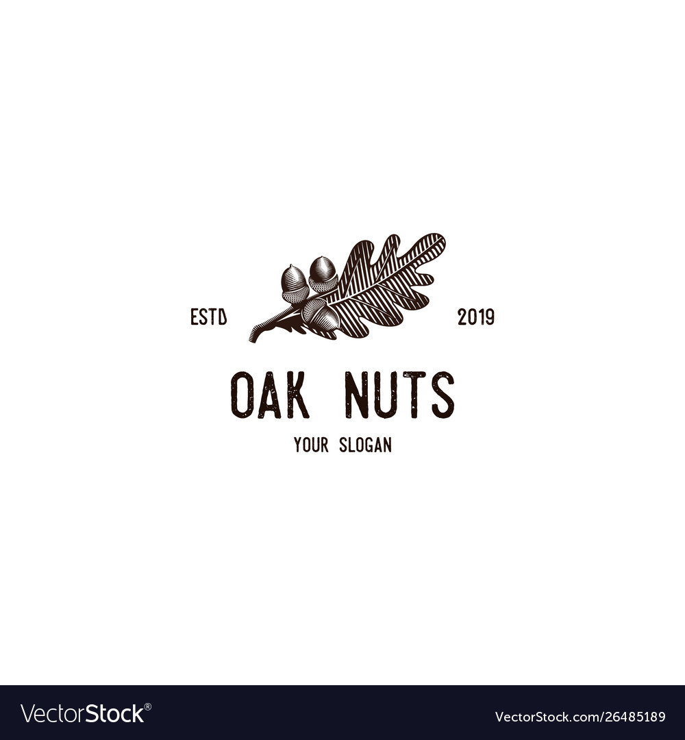 Oak nuts vintage logo