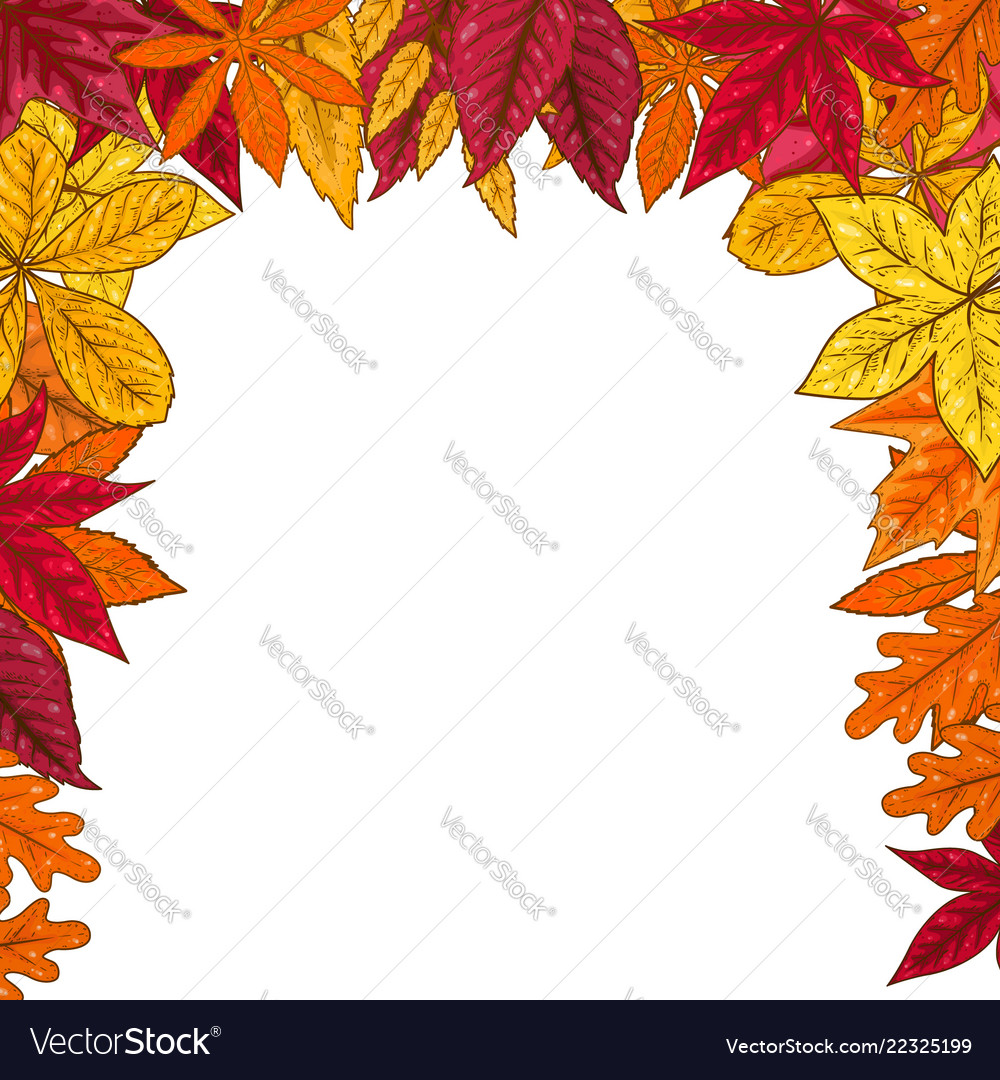 Border with autumn leaves design element for