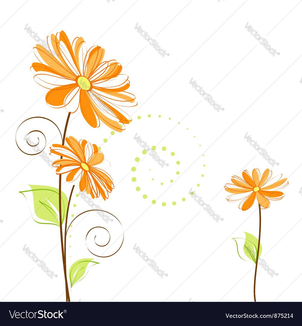 Springtime colorful Daisy flower vector image