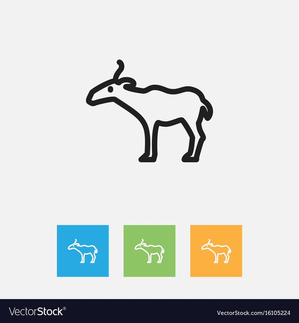 Of zoo symbol on gazelle
