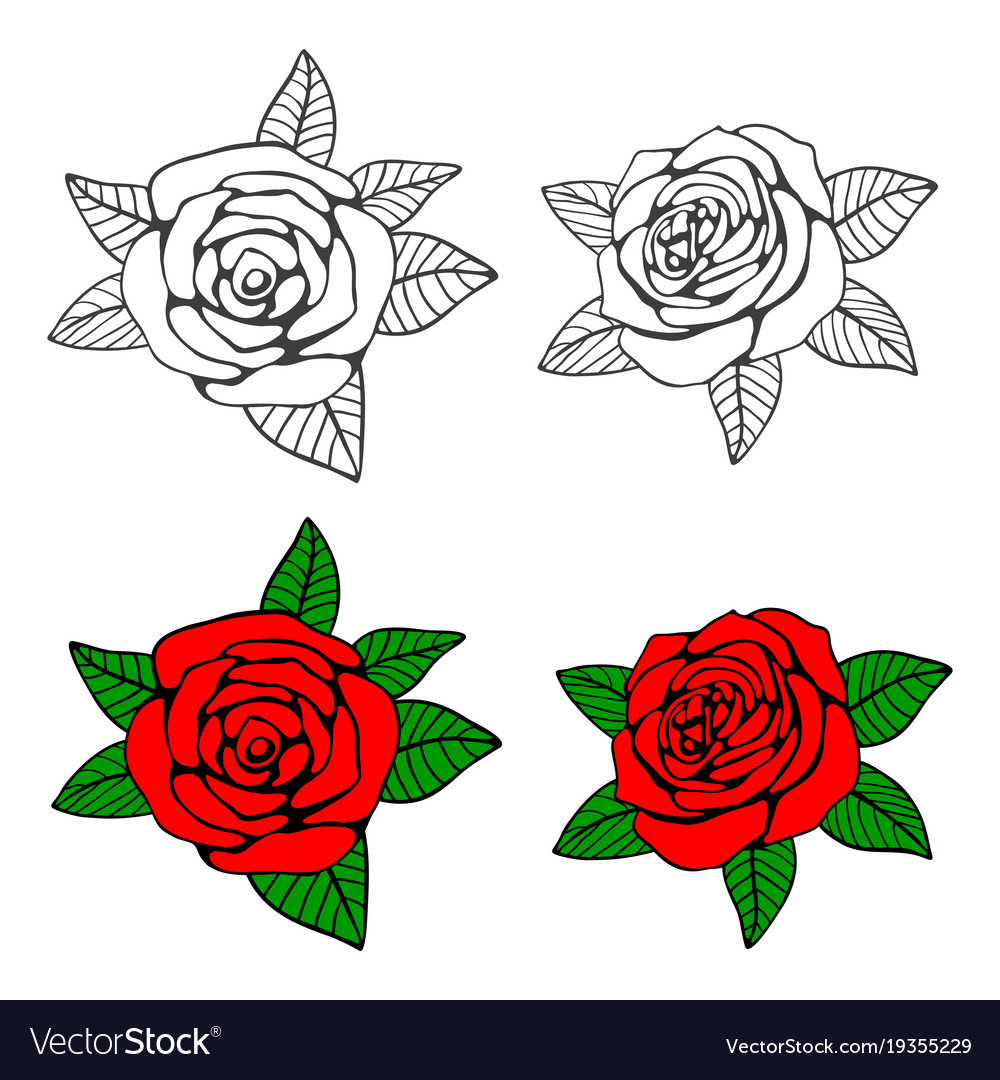 Hand drawn roses coloring page Royalty Free Vector Image