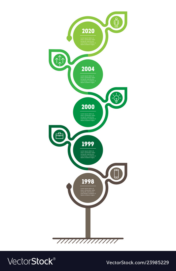 Vertical timeline infographics the sustainable