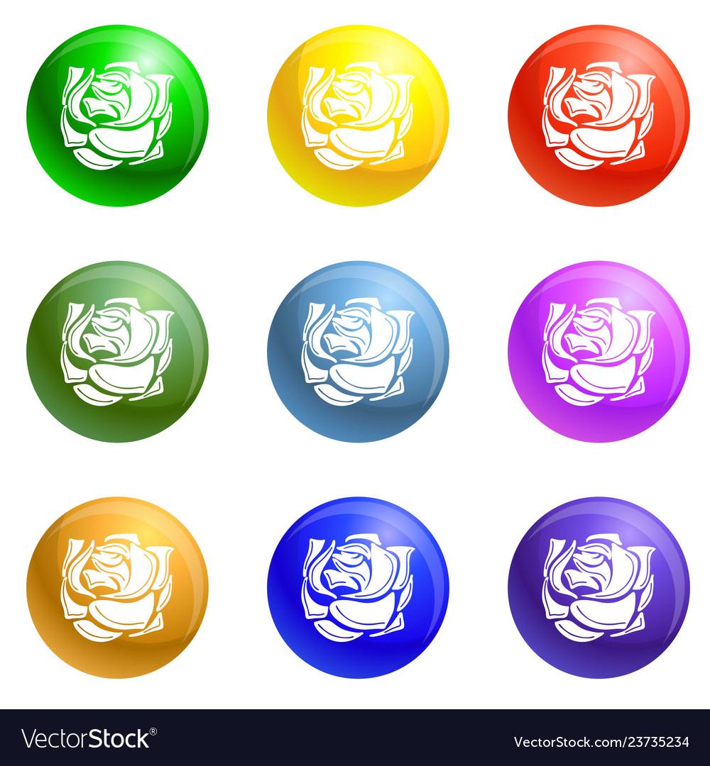 Decorative rose icons set