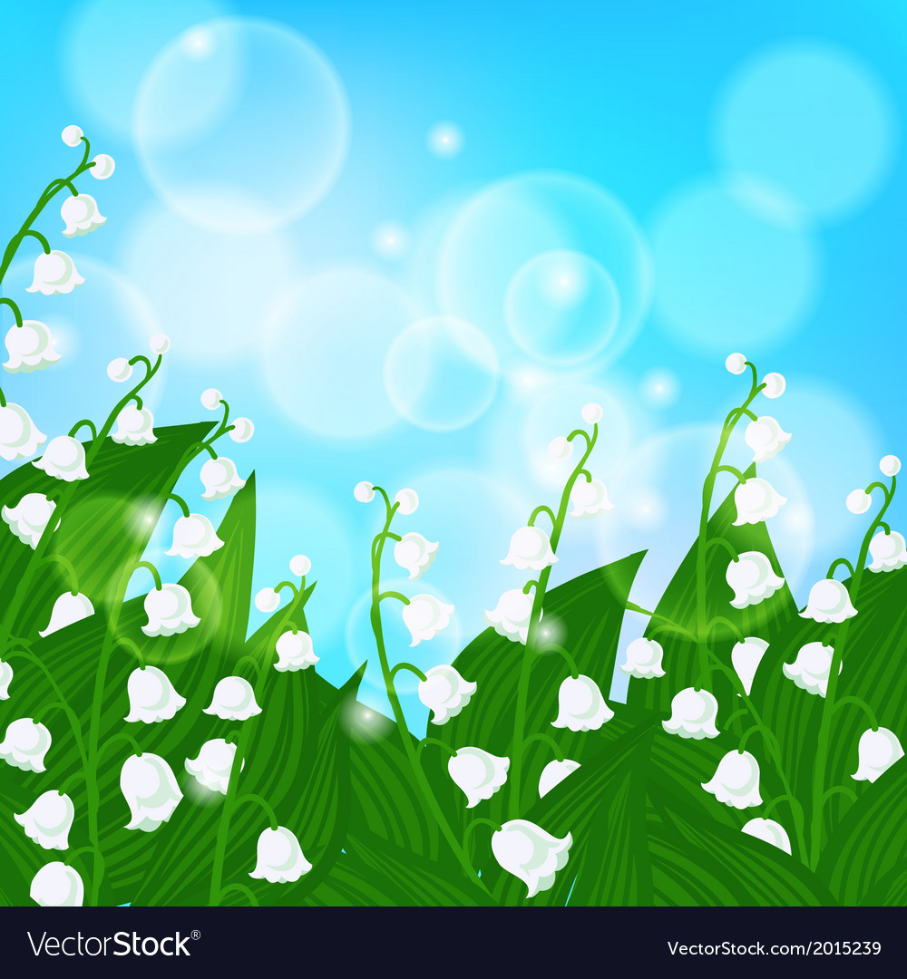 Card With Field Of Lily Of The Valley Flowers Vector Image