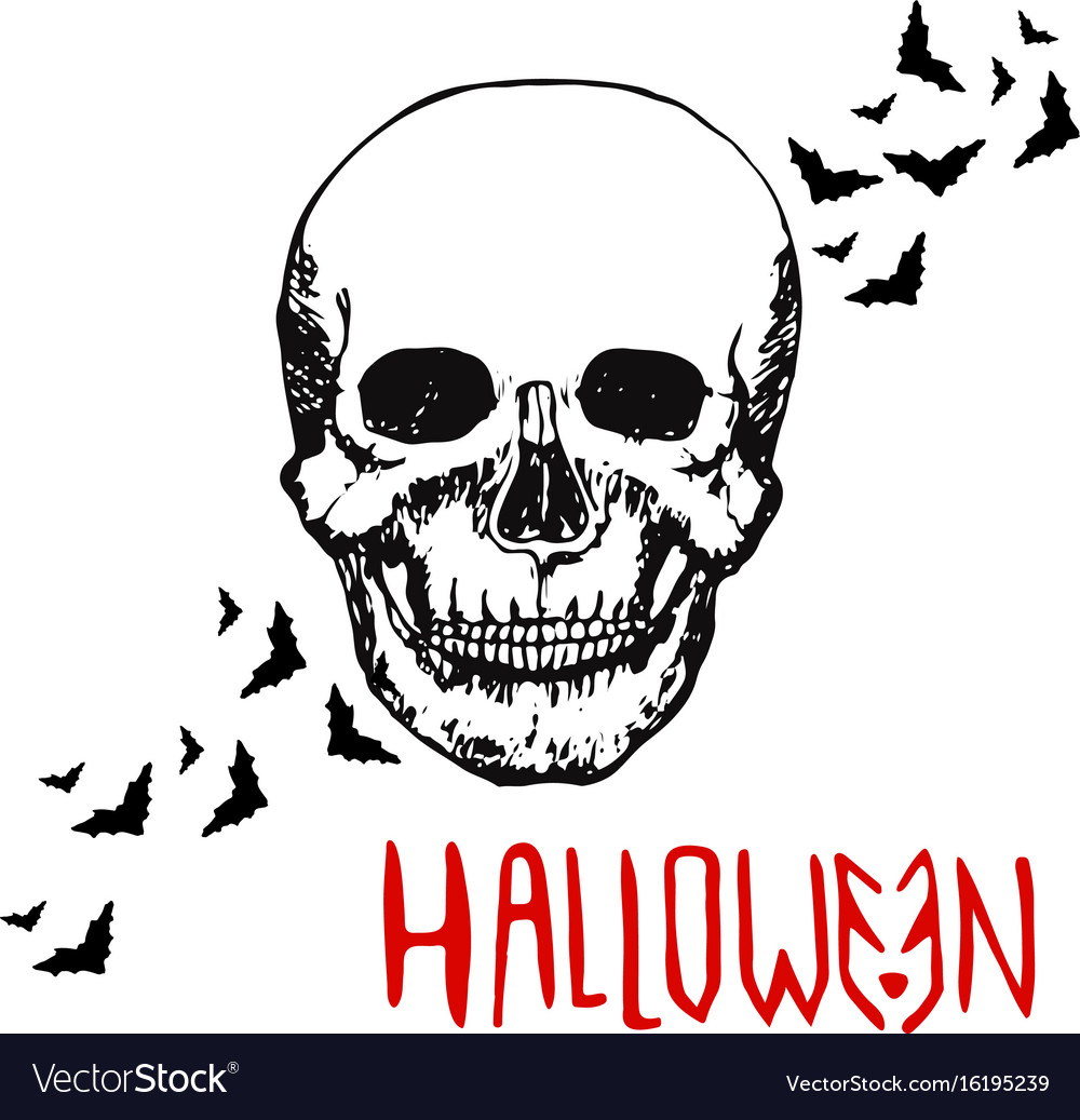 Skull head halloween background hand drawn vector image