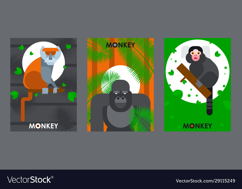 Apes and monkeys in flat style banners