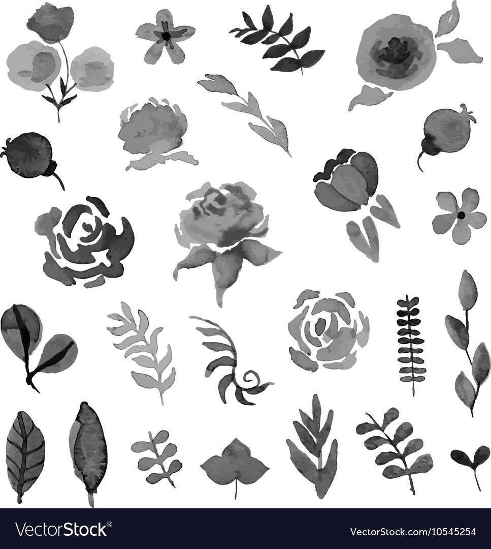 Floral set Watercolor style design