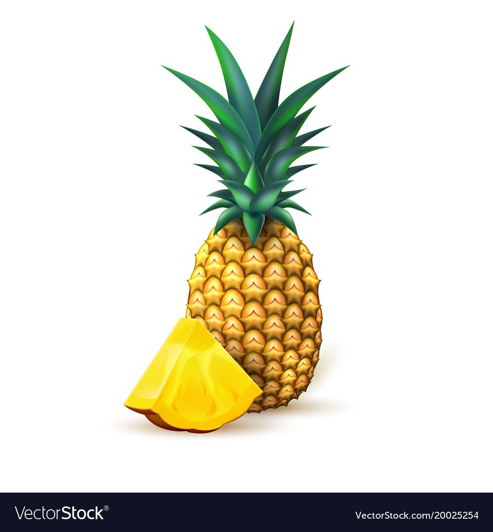 Pineapple realistic summer exotic fruit slice