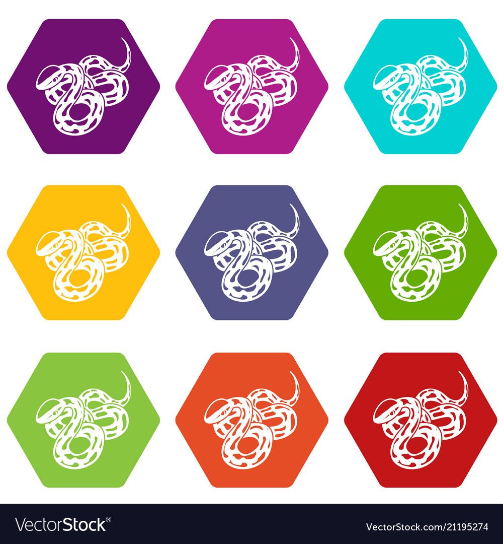 Texas snake icons set 9