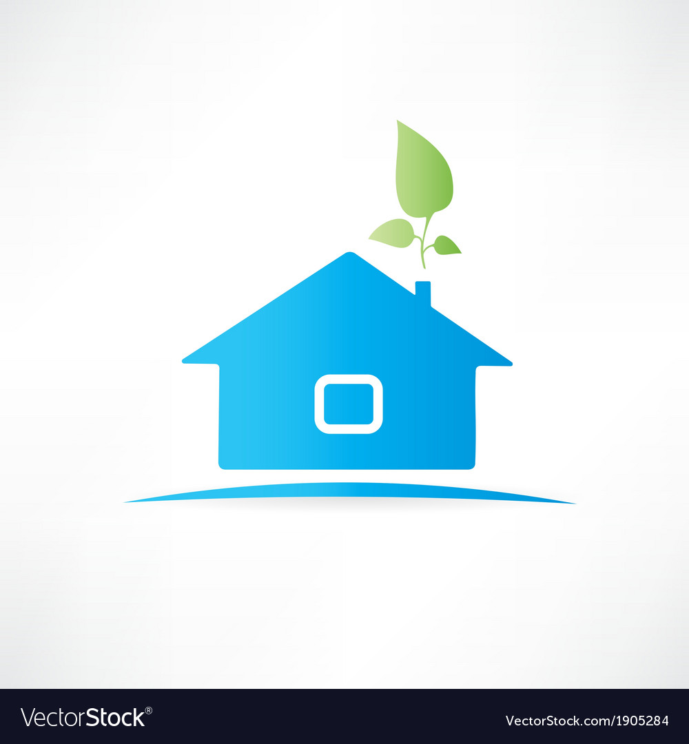 House with the plant