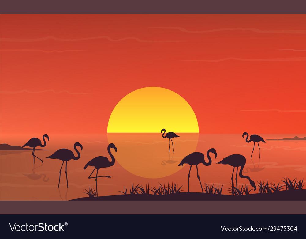Flamingo silhouette at sunset landscape on lake