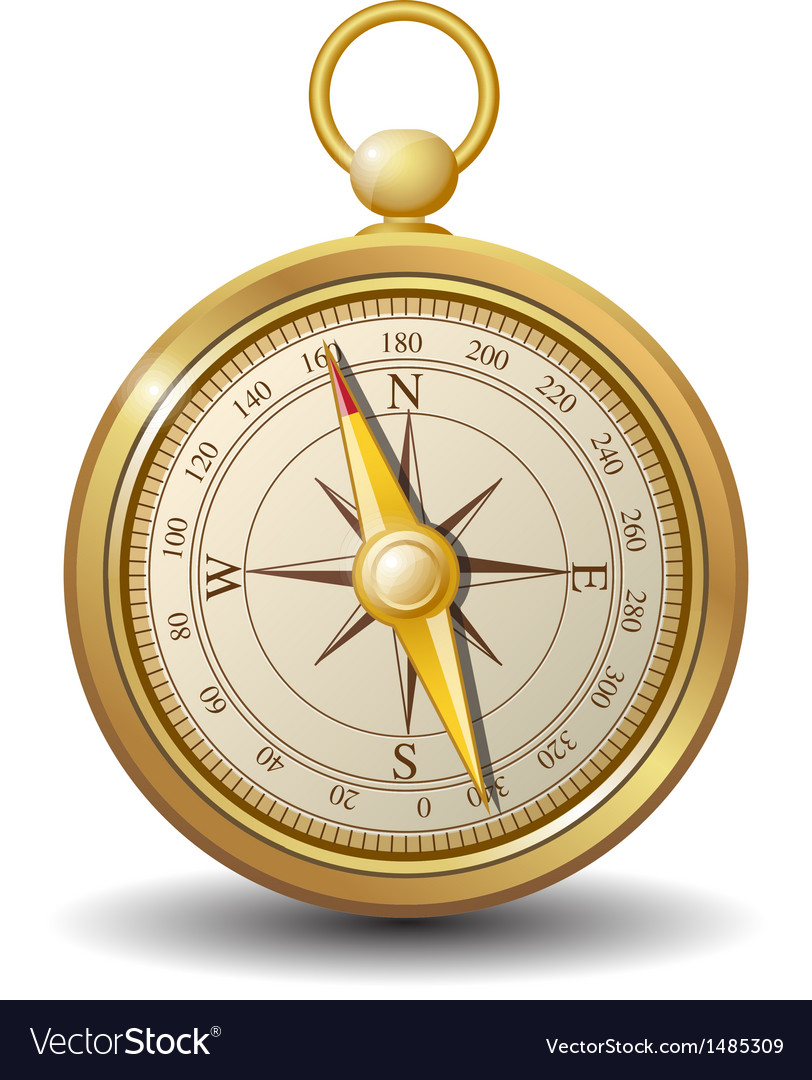 Gold compass vector image