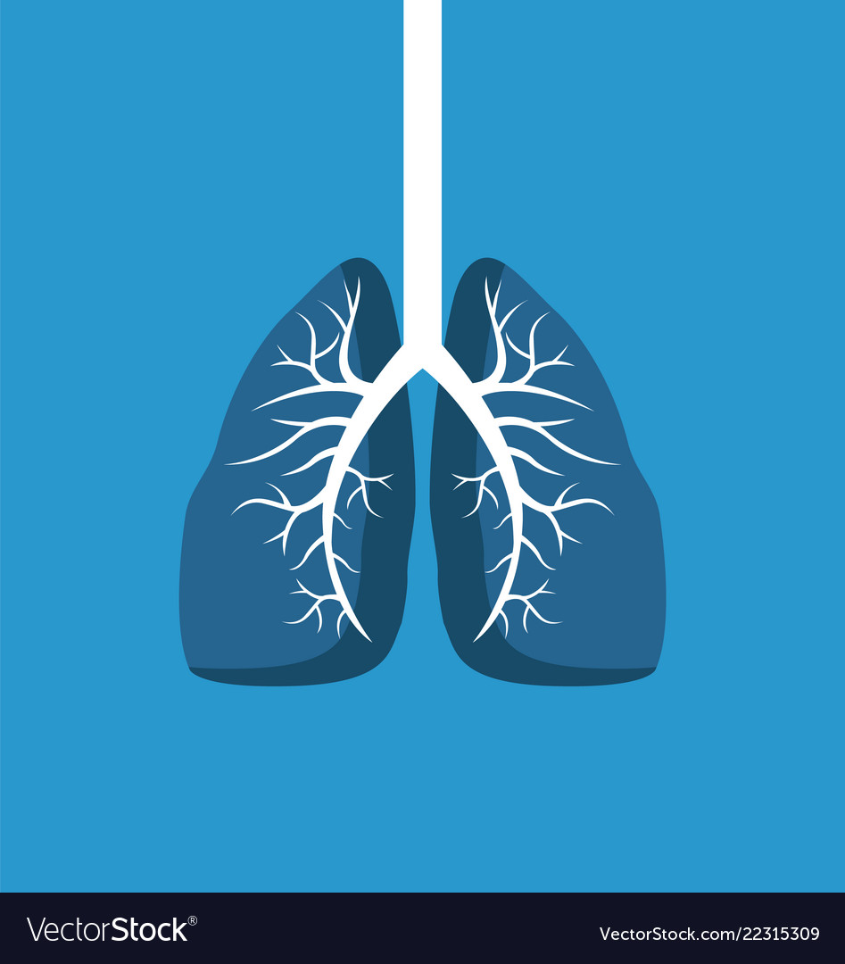Lungs image banner isolated on blue background