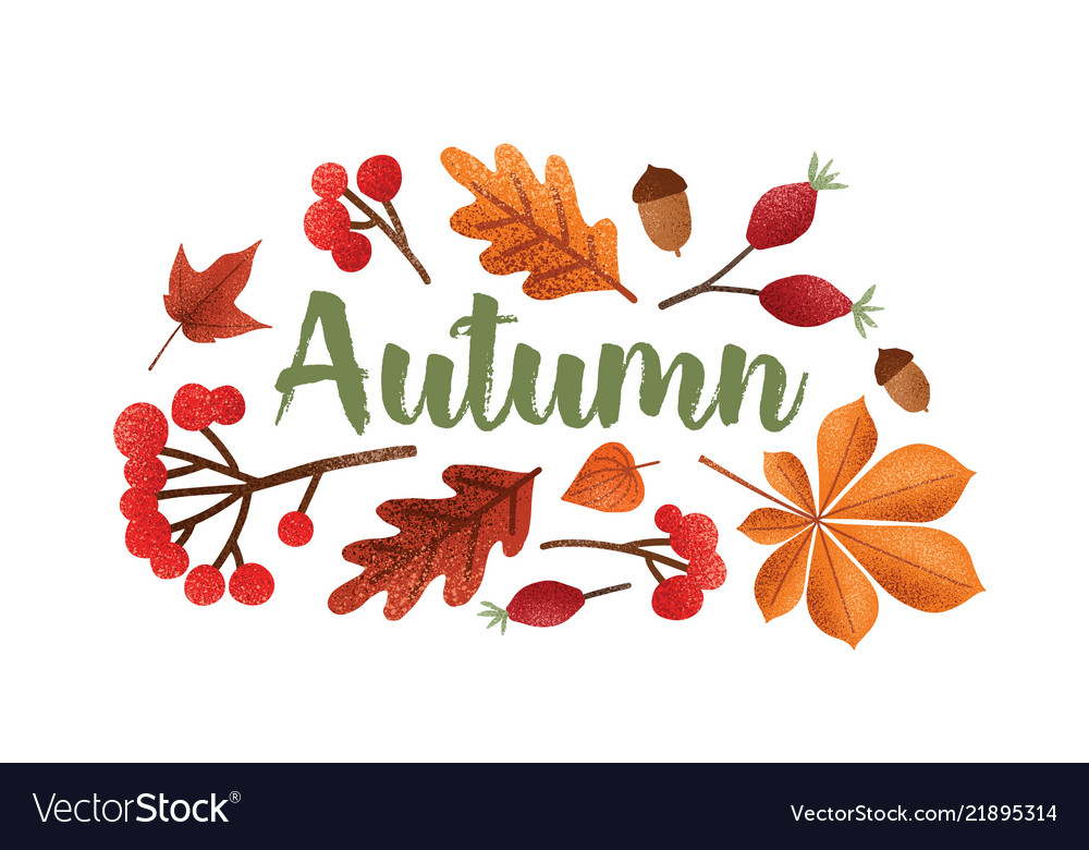 Autumn lettering handwritten with beautiful Vector Image