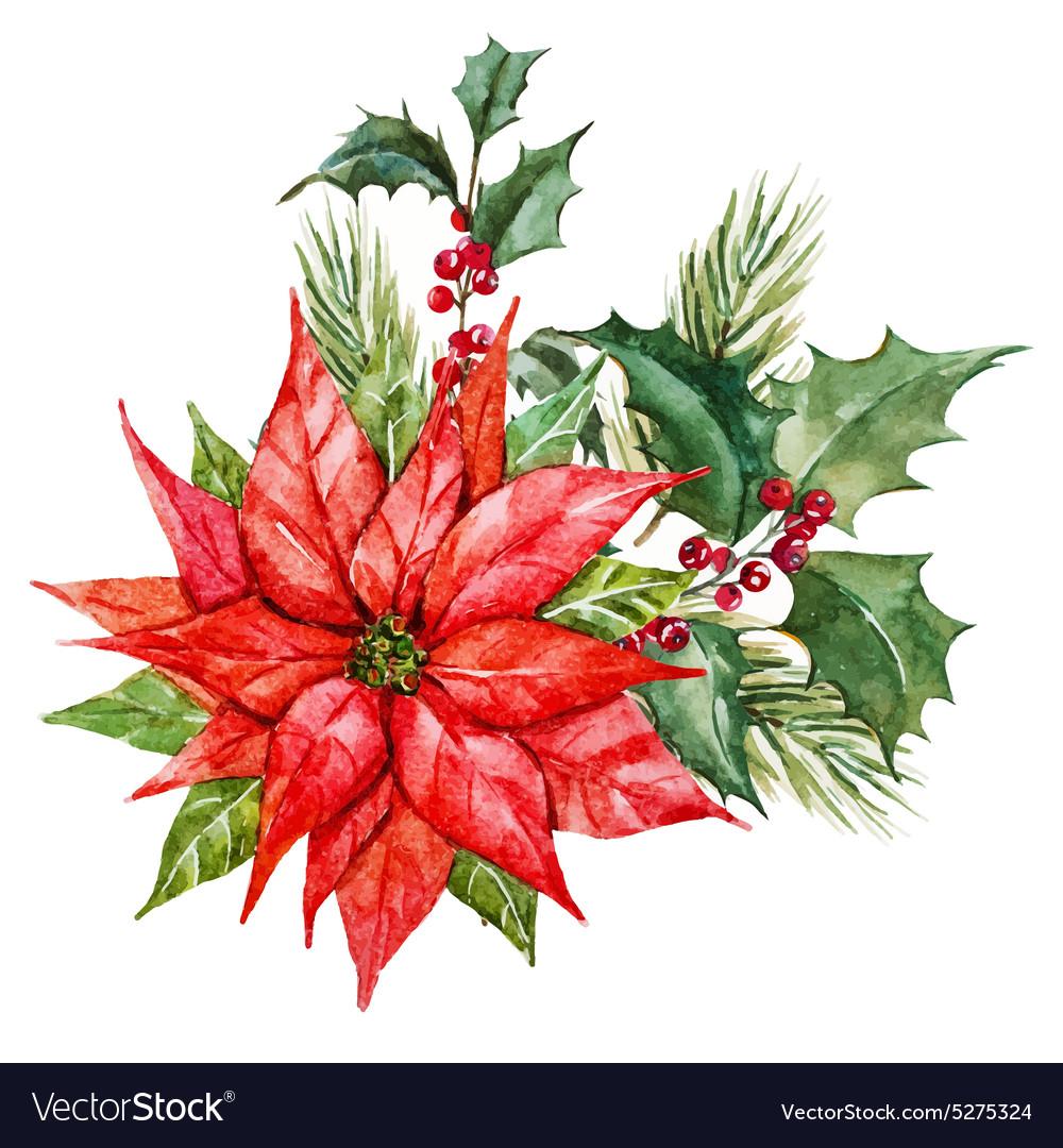 Watercolor christmas flowers