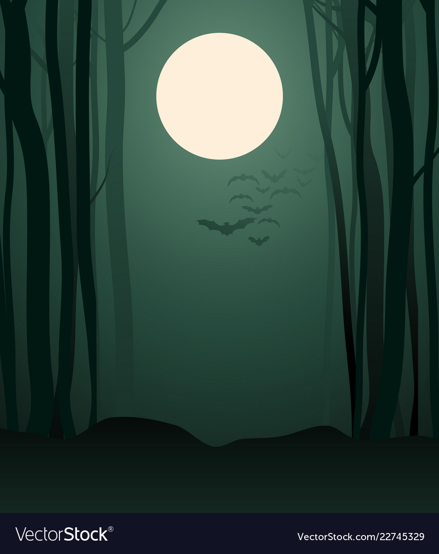Foggy forest in light full moon and vector
